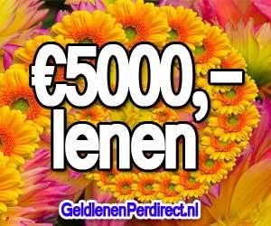 Doorlopend krediet 5000 euro