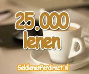 25000 euro lenen