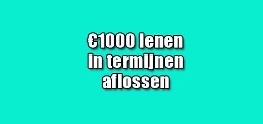 1000 lenen in termijnen aflossen
